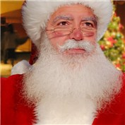 Celebrity Santas!