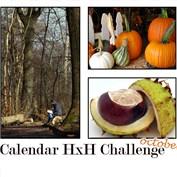 2014 Calendar Challenge - October