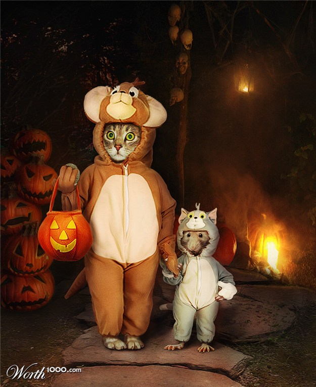 images of animals at halloween spacehero