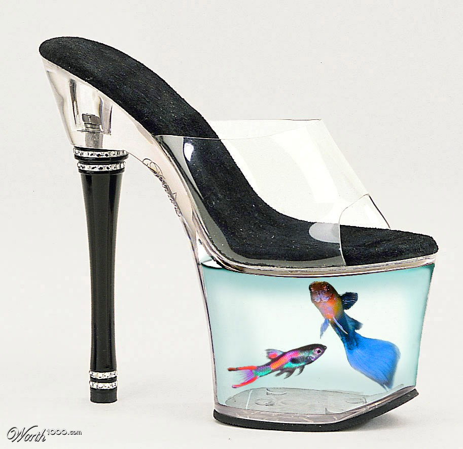 Fish shoe worth1000 contests for Fish tank shoes
