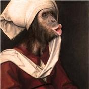 Animal Renaissance 16