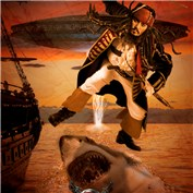 Pirates of the Caribbean: Jump The Shark