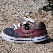 B2B - Lost Shoe