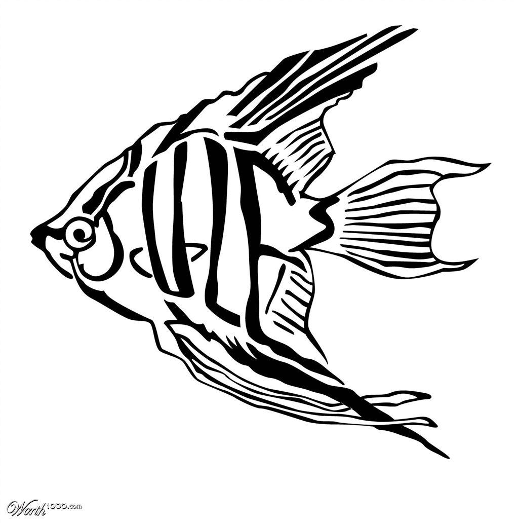 french angelfish tattoo