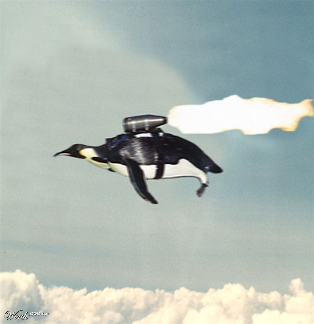 flying pinguin