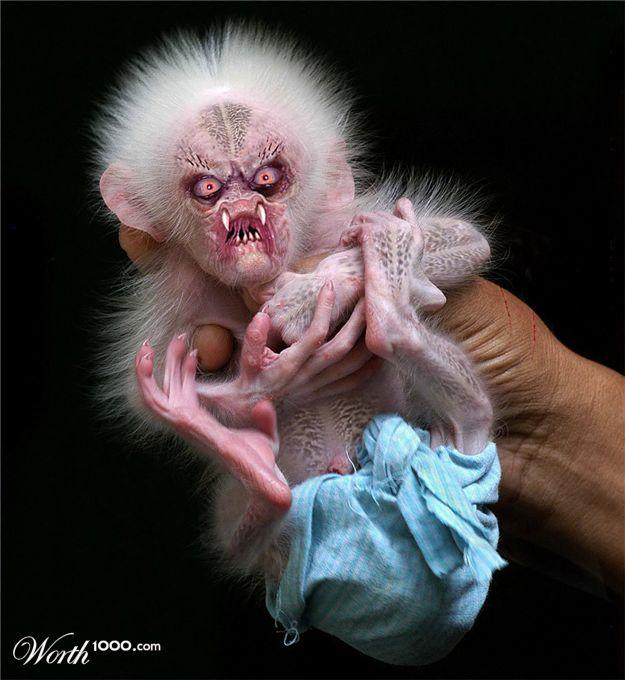 Fat Baby Monkeys Baby Monkeys Are so Cute