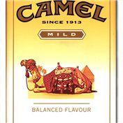 B2B: Camel