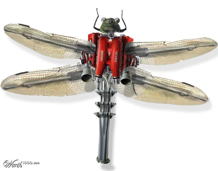 Dragonfly (1024x2000)