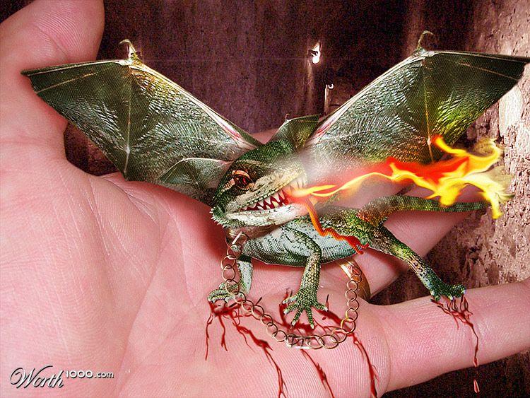 Как сделать себе настоящего дракона 834