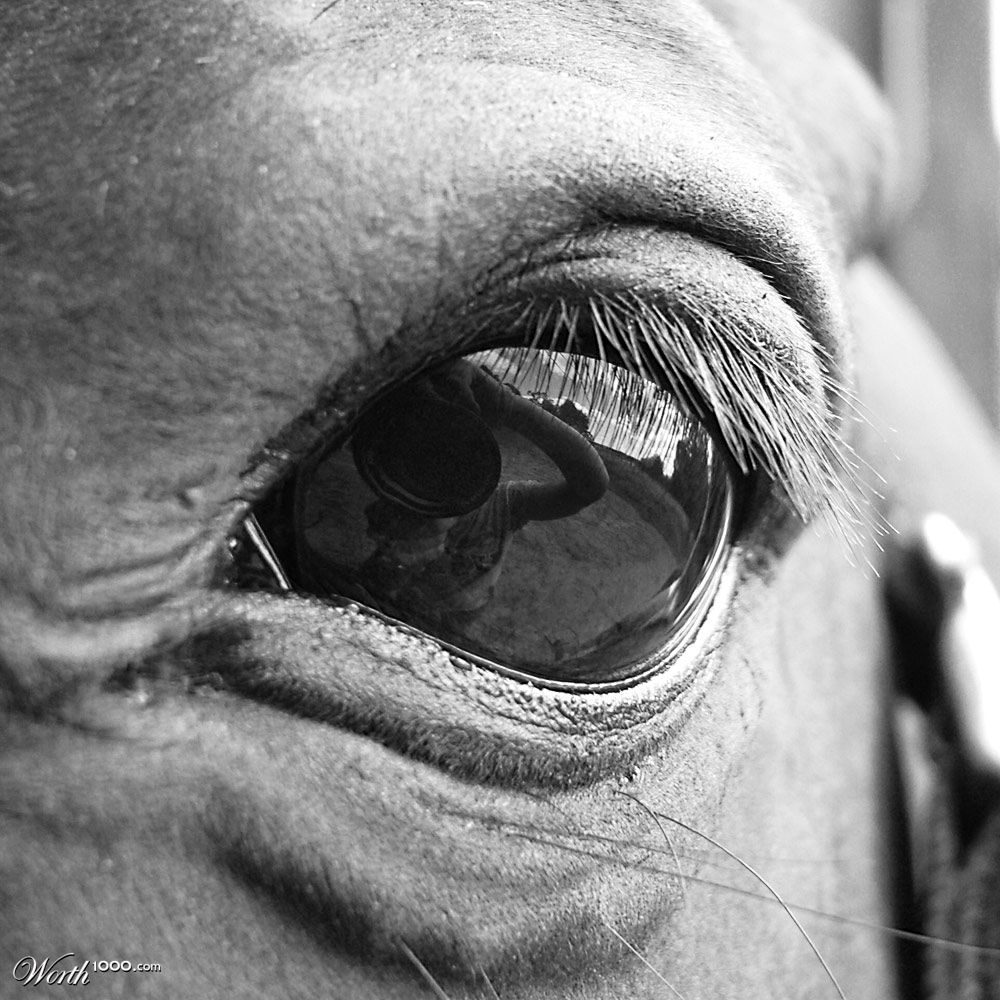 Eye Reflection Black And White 33rd place entry in Beginner