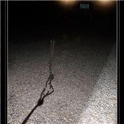 Bonus: Visual Puns 2006