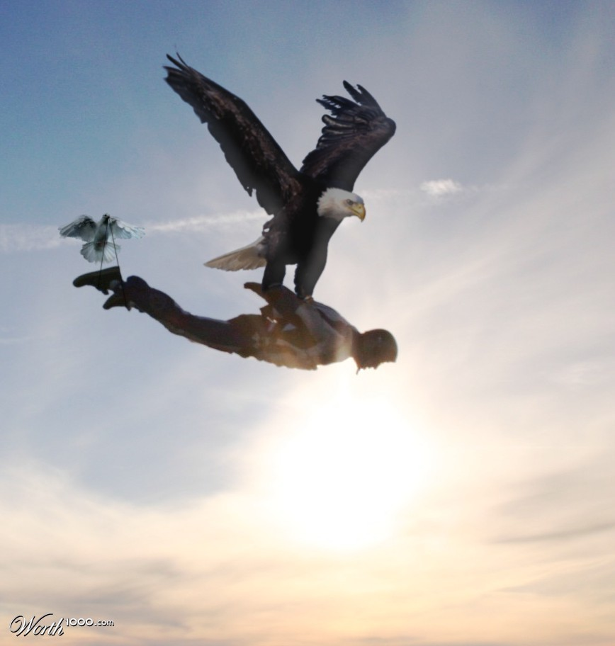 eagle attack - photo #29