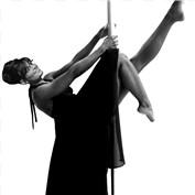 Pole Dancing Politicians