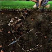 PS Bonus Contest: Archaeological Anomalies 12