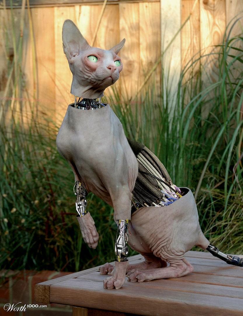 Cyber Cat (1024x2000)