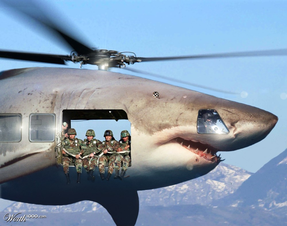 shark s helicopter with New Stealth Shark Hawk on Dinoshark Fear Whats Just Below The Surface likewise Luau Kalamaku also 1 in addition In Defense Of Jaws Sequels furthermore German Tourist Killed Egypt Shark Attack.