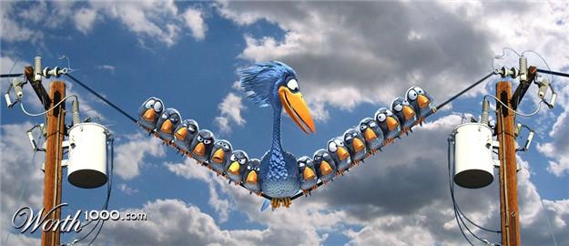 Pixar Cartoons Birds Pixar Birds