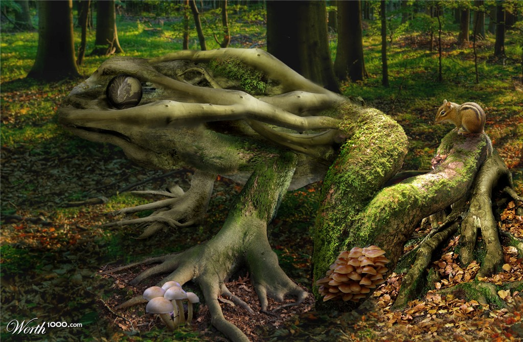 Tree Frog (1024x2000)