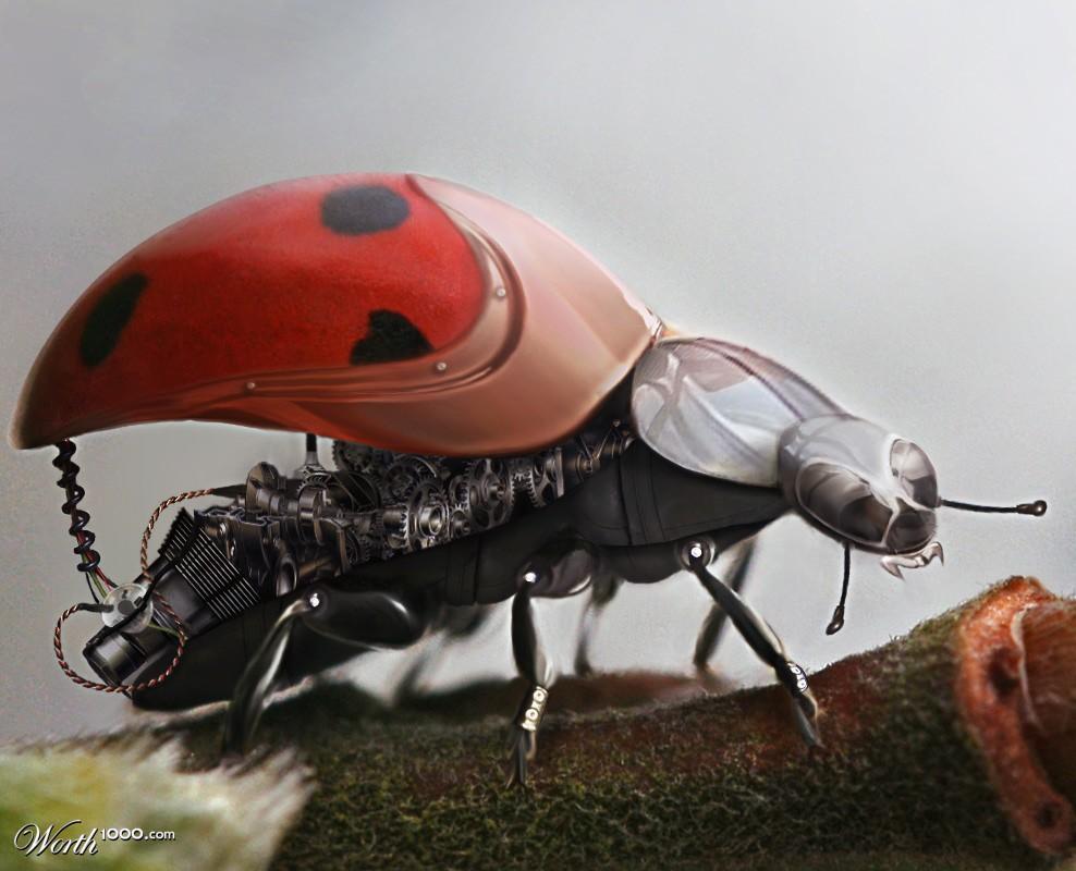 LadyCyBug (1024x2000)