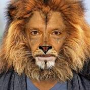 Ben the Lion-Kingsley