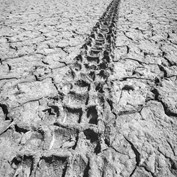 Beginner: Dry 2014