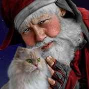 The Secret Life of Santa Claus 13