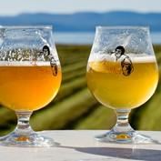Intermediate: Beer 2014