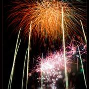Celebrations 2014