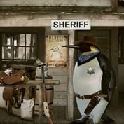Penguins 10