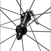 Bikes and Trikes 2015