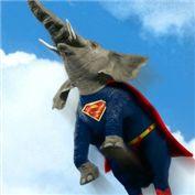 Critter Superheroes
