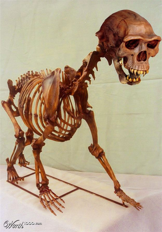 Half Human Half Dinosaur - photo#28