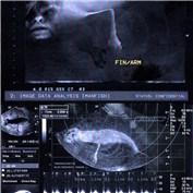 Humanoid Aquatic Vertibrate