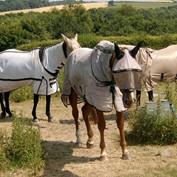 B2B - Horse Shades