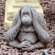 B2B - Stone Ape