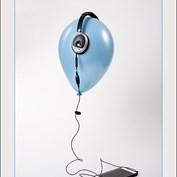 The Senses: Hearing 2015