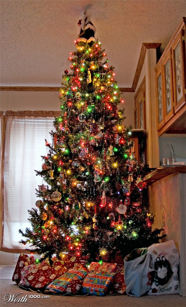 christmas trees worth1000 contests. Black Bedroom Furniture Sets. Home Design Ideas