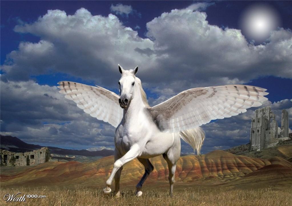 Pegasus - Worth1000 Contests