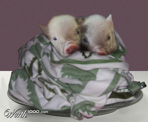 Pigs in a blanket - Worth1000 Contests